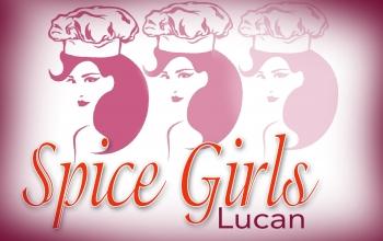 കാര്ണിവലിന് ചായക്കടയുമായി 'SPICE GIRLS, LUCAN'