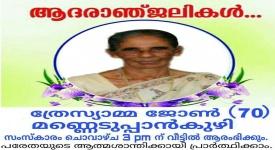 ഫിംഗ്ലസ് മലയാളി റിജാ ജോർഡിയുടെ മാതാവ് ,  ത്രേസ്യാമ്മ ജോൺ (70 ) അന്തരിച്ചു.